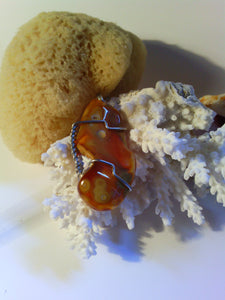 Carnelian Fossil Agate - Agatized Earth