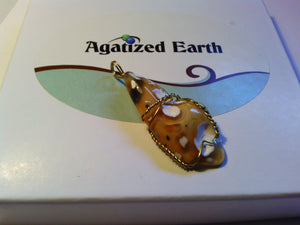 Monarch Butterfly Coral - Agatized Earth