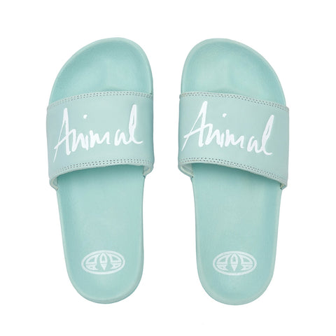 Animal Womens Pinkie Slider - Harbour Green