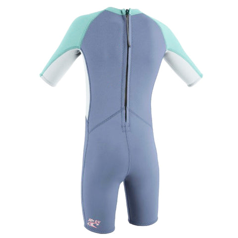 O'Neill Girls Toddler Reactor Shorty Wetsuit