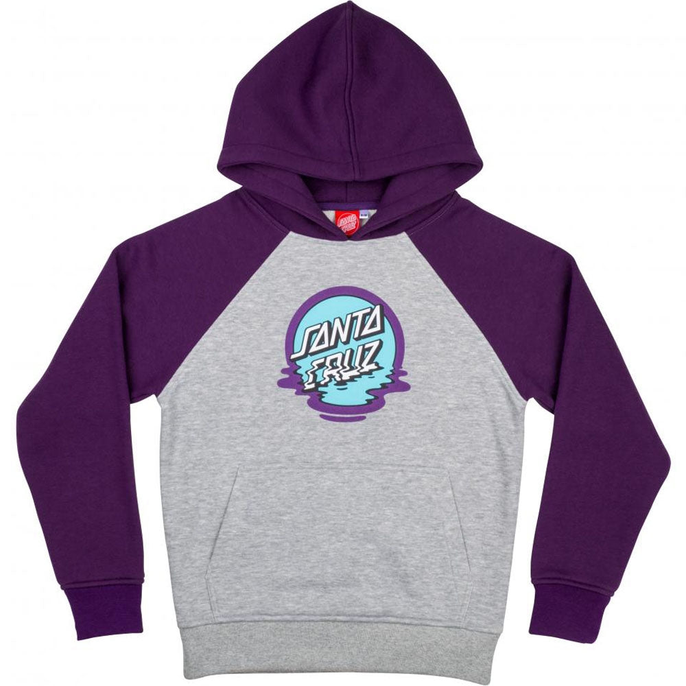 Santa Cruz Youth Dot Reflection Hoody