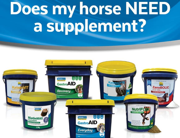 Does my horse NEED a supplement?