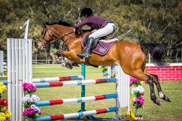 sponsored rider show jumping competition