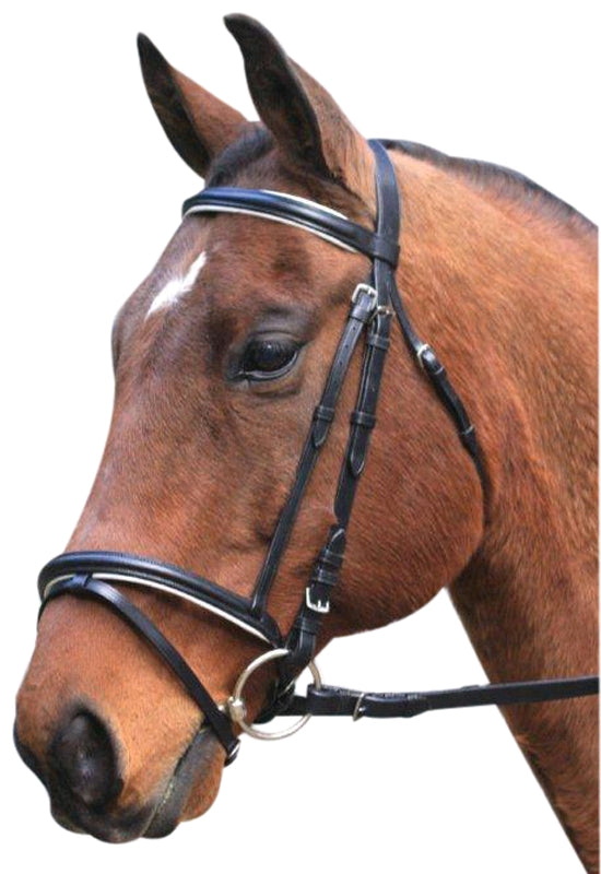 Eventing Bridle - With Reins - Wanneroo Stockfeeders
