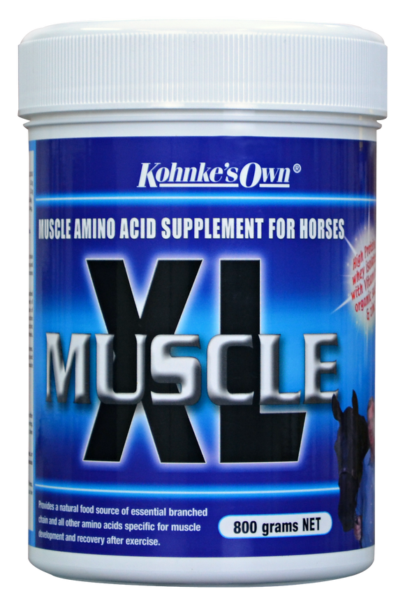 Muscle XL