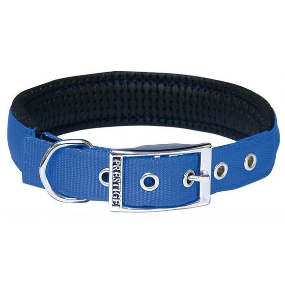 Padded Dog Collar - Blue