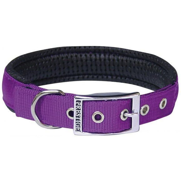Padded Dog Collar - Purple - Wanneroo Stockfeeders