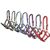 Rancher Halter - Multi-Colour - Wanneroo Stockfeeders