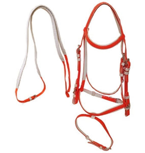 PVC Bridle - Red - Wanneroo Stockfeeders