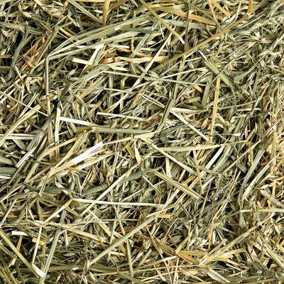 Oaten Hay Bag - Wanneroo Stockfeeders