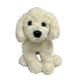 Lucky Labrador Teddy - Wanneroo Stockfeeders
