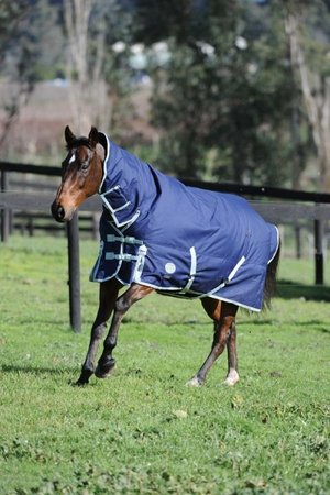 Weatherbeeta Winter Rug - Wanneroo Stockfeeders