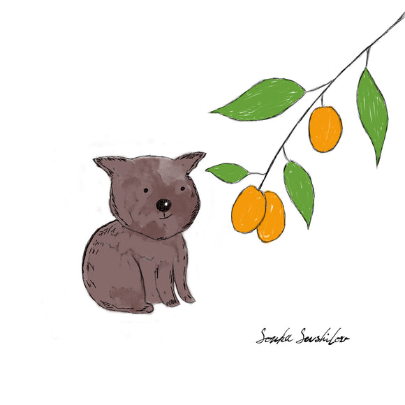 Wombat Illustration