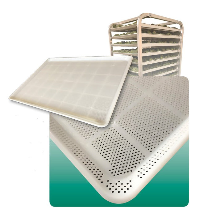 HDPE Drying Tray - 20 Pack