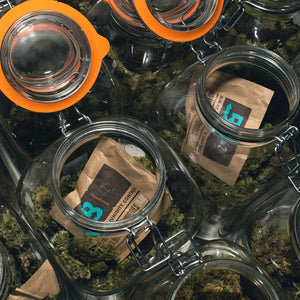 Boveda 62% RH - 67g (not individually wrapped)