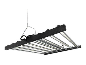 LED Toplighting Superstar Series suspended from cable