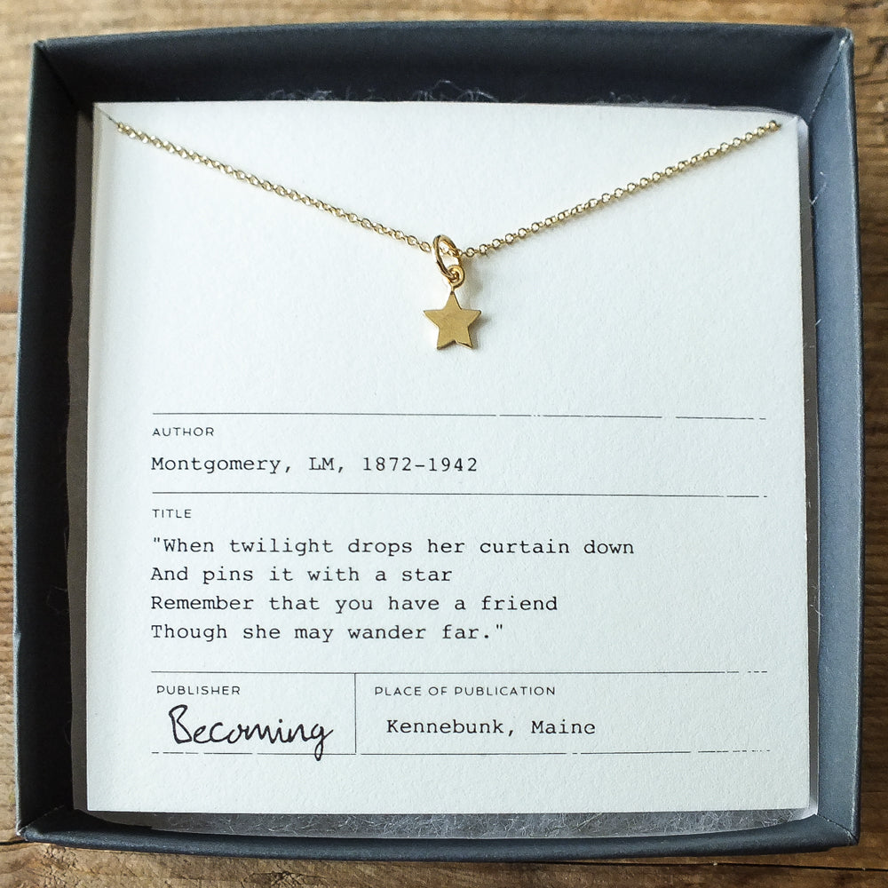 Tiny Star Friendship Necklace
