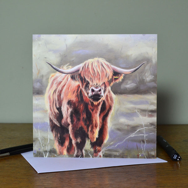 Blank Highland cow card