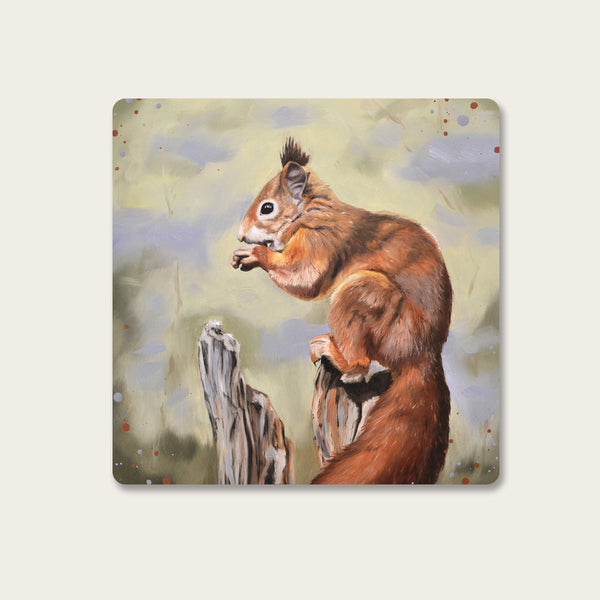 Nibbles - Red squirrel coaster