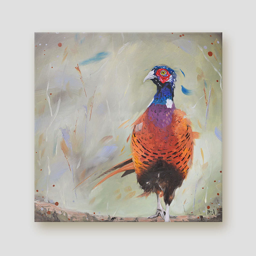 Pheasant canvas - Dashing