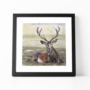 Dignity - Stag Fine Art Print