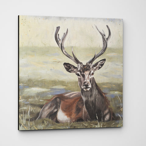 Dignity - Stag Canvas Print