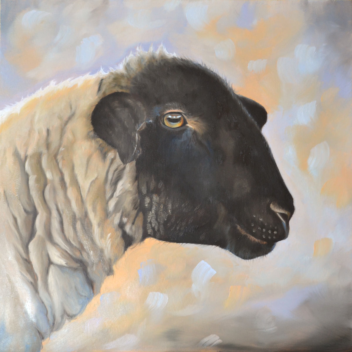 Suffolk sheep oil painting