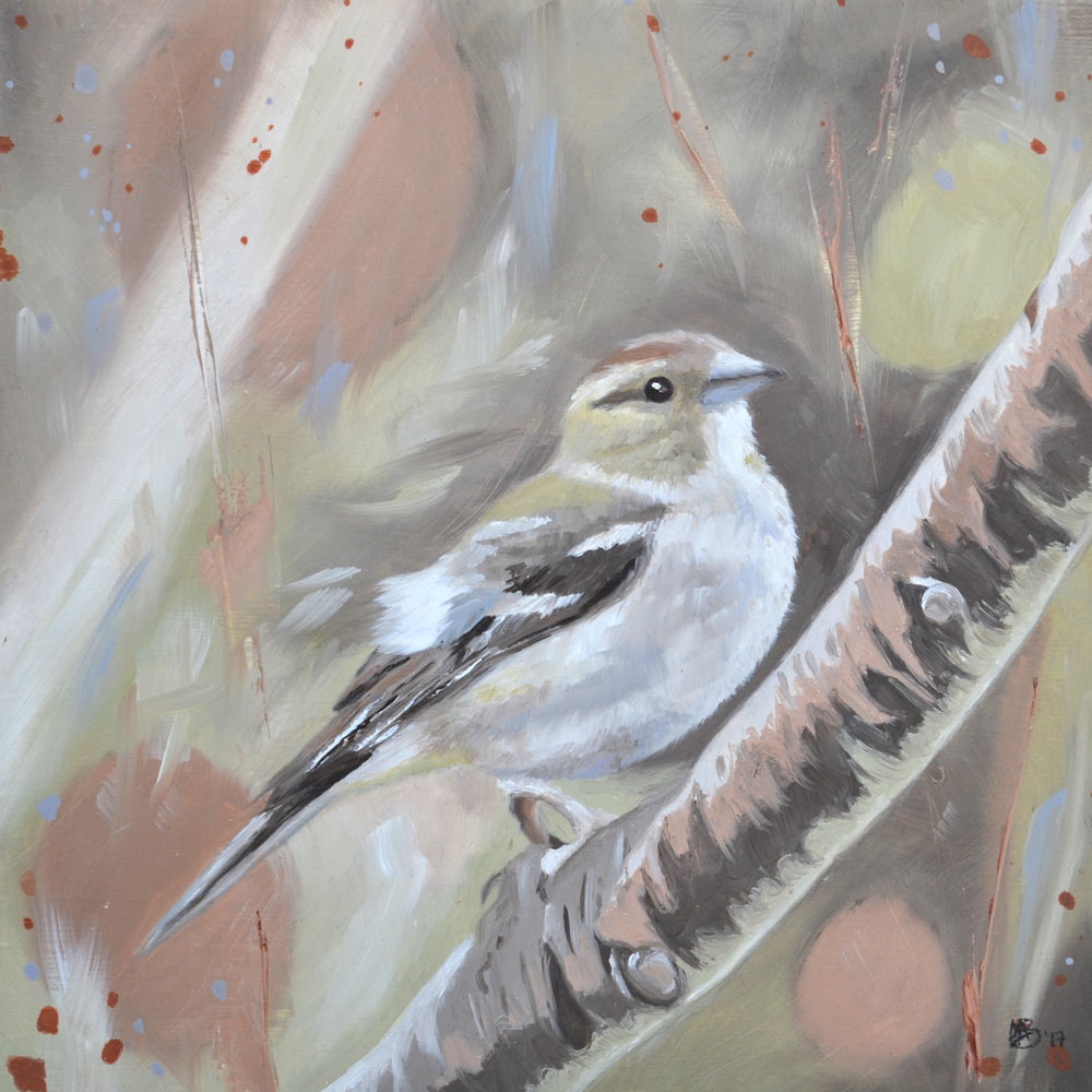 Female chaffinch oil study