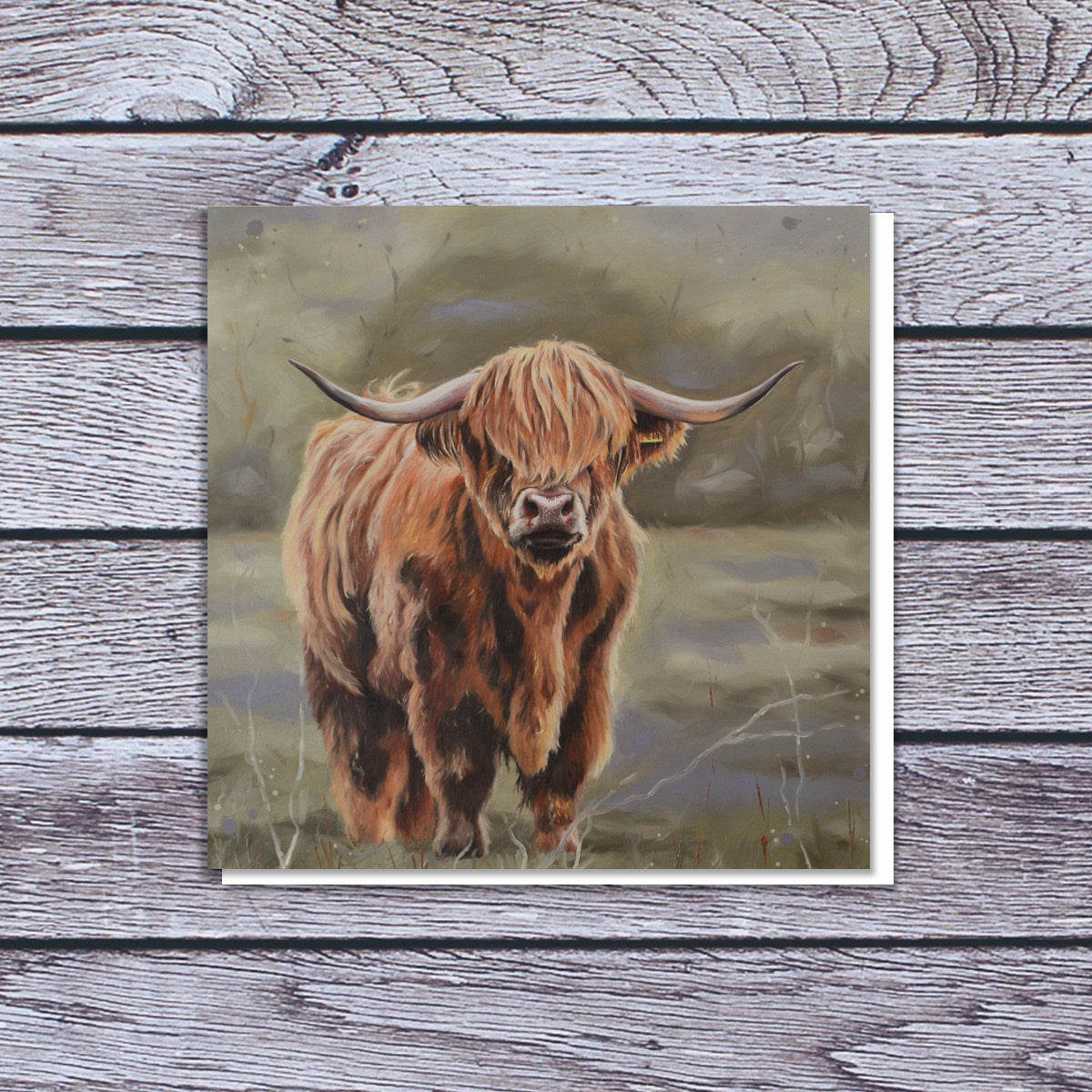 Bonnie Highland cow card