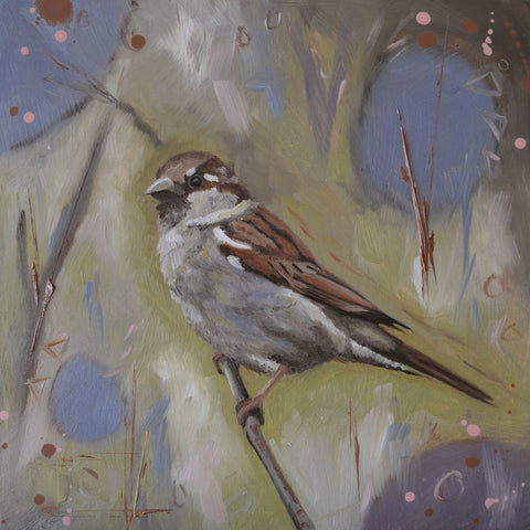 House sparrow - limited edition print