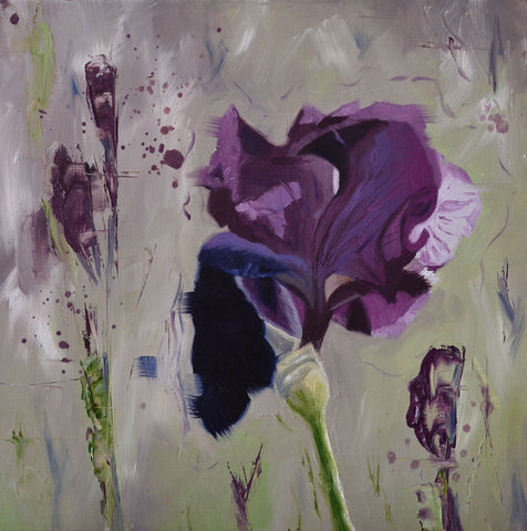 Purple iris limited edition print