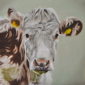 Life - limited edition cow print