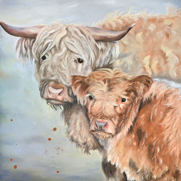 Lumi and Floss Highland cow mother and calf