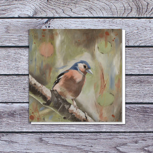 Male chaffinch in sunlight card