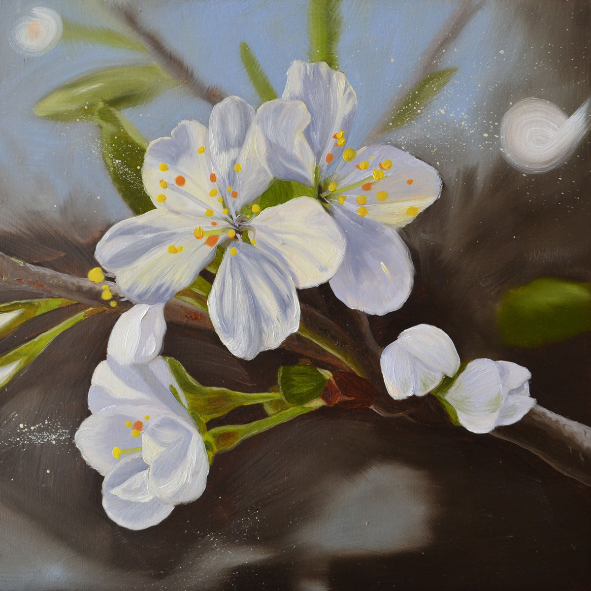 Morello cherry blossom II - original oil painting