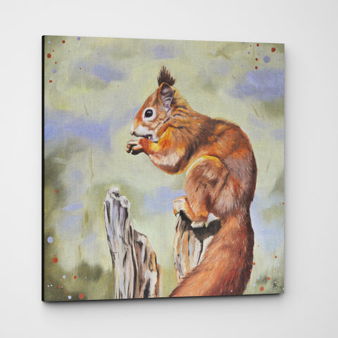 Nibbles - Red Squirrel Premium Canvas Print