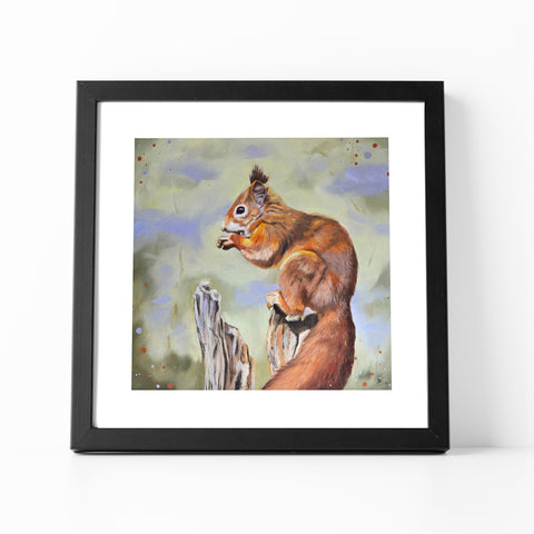 Nibbles - Red Squirrel Fine Art Print