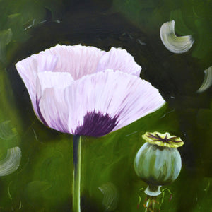 Poppy and seed head - original oil painting
