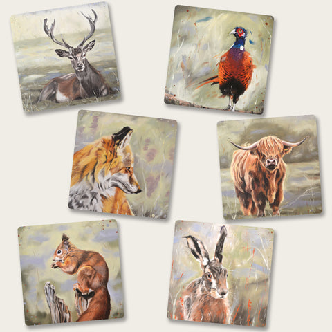 Set of six animal coasters