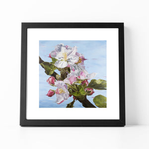 Framed apple blossom print