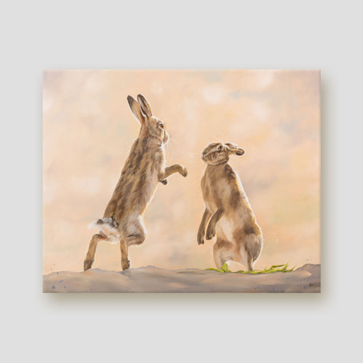 Whiskers at Dawn Boxing Hares canvas