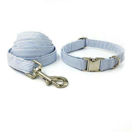 Blue striped dog collar set with leash