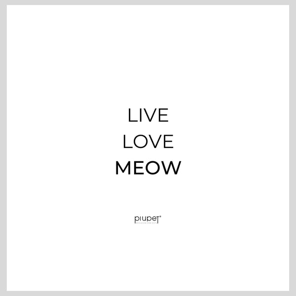 Live Love Meow Damen Shirt
