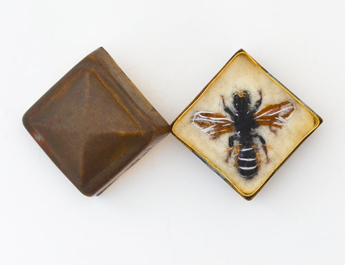 25bee) Female Large Scissor Bee