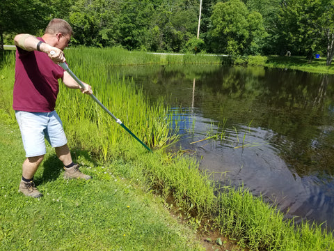 Cattails being cut from shore with The Yard Blade® attached to 5'-15' telescoping pole - CMI Creations