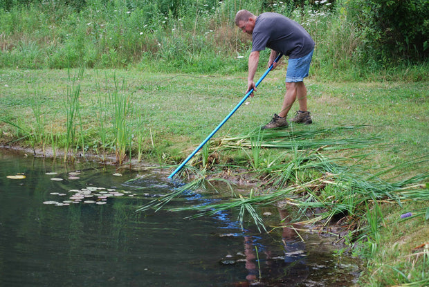 Cutting cattails from shore with The Yard Blade® cattail cutting tool - CMI Creations
