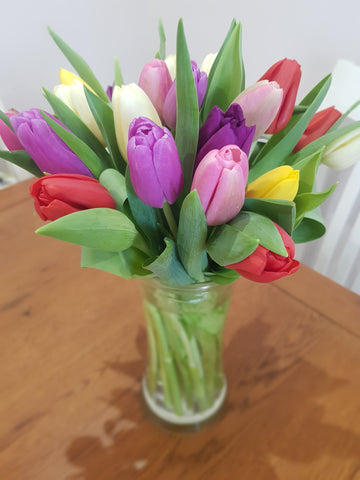Florist Choice Tulips