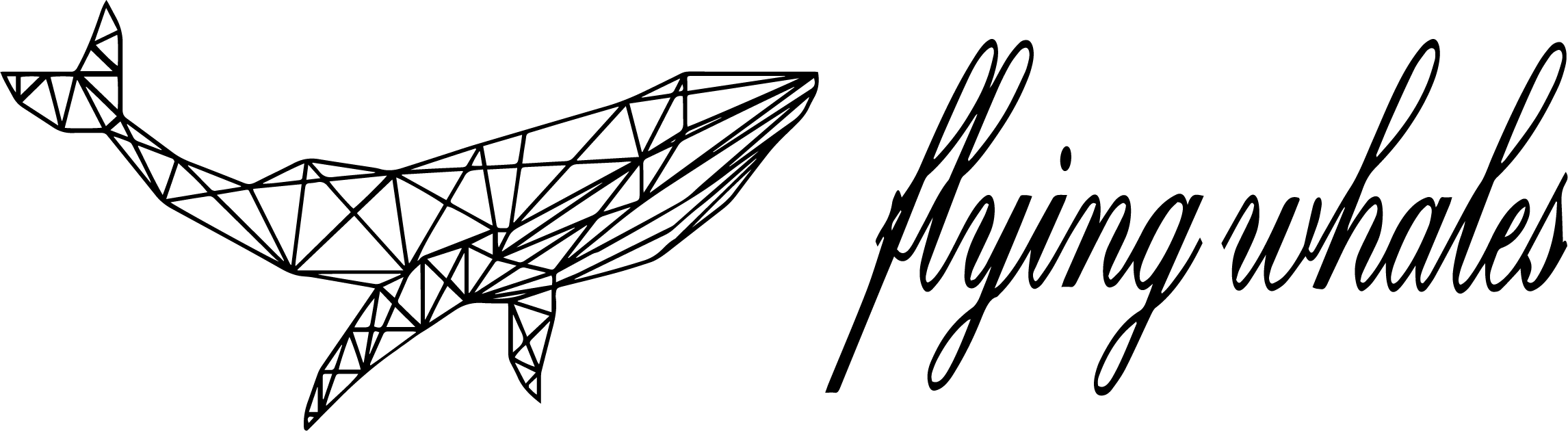 Flying Whales ltd