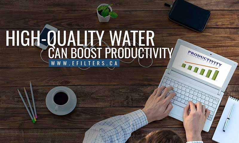 High-quality water can boost productivity