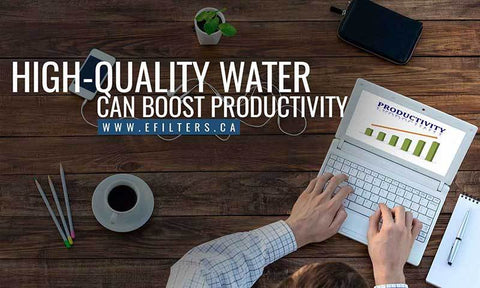 High quality water can boost productivity